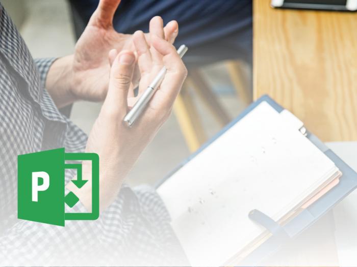 Microsoft Office Project - Lastnosti projekta - članek